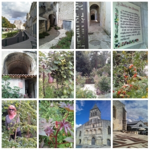 Views of Jonzac- Château, gardens, church, marché